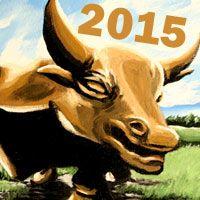 bull 2015